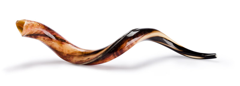 shofar-picture